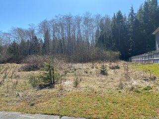 Photo 3: 6215 Hunt St in : NI Port Hardy Land for sale (North Island)  : MLS®# 873026