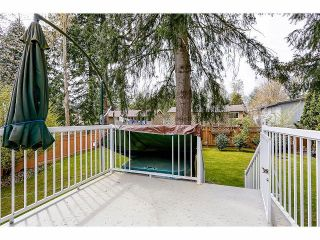 Photo 18: 9211 PRINCE CHARLES Boulevard in Surrey: Queen Mary Park Surrey House for sale : MLS®# F1409362
