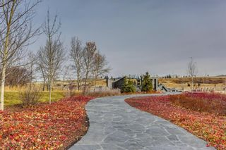 Photo 14: 1430 10 Avenue SE in Calgary: Inglewood Land for sale : MLS®# A1061564