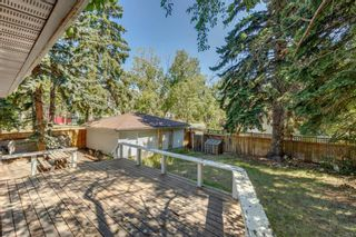 Photo 31: 2432 Ulrich Road NW in Calgary: University Heights Detached for sale : MLS®# A1140614