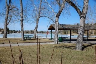 Photo 48: 12420 Lake Christina Road SE in Calgary: Lake Bonavista Detached for sale : MLS®# A1085247