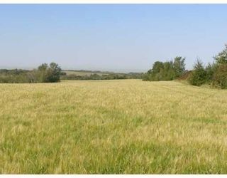 Photo 9: SW COR TWP RD 534 & RR 222: Rural Strathcona County Rural Land/Vacant Lot for sale : MLS®# E4251108