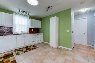 Photo 16: 3613 44 Avenue in Edmonton: Zone 29 House for sale : MLS®# E4246393