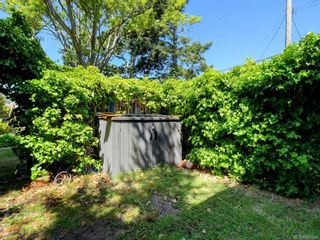 Photo 32: 686 Monterey Ave in Oak Bay: OB South Oak Bay House for sale : MLS®# 845564