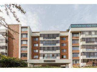 Photo 17: 104 420 Linden Ave in VICTORIA: Vi Fairfield West Condo for sale (Victoria)  : MLS®# 759474
