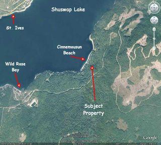 Photo 69: #5 6741 Eagle Bay Road: Eagle Bay House for sale (Shuswap Lake)  : MLS®# 10228740