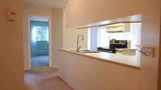 """Photo 2: E203 40180 WILLOW Crescent in Squamish: Garibaldi Estates Condo for sale in """"Diamond Head Place"""" : MLS®# R2075103"""