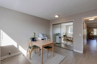 Photo 16: 196 Edgedale Way NW in Calgary: Edgemont Detached for sale : MLS®# A1147191
