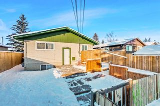 Photo 16: 168 Dover Meadow Close SE in Calgary: Dover Detached for sale : MLS®# A1082428