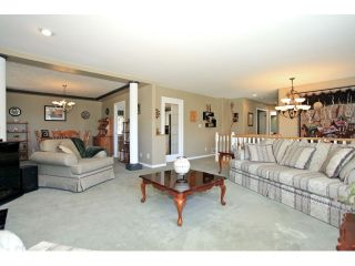 Photo 8: 22075 44A Avenue in LANGLEY: Murrayville House for sale (Langley)  : MLS®# F1222580