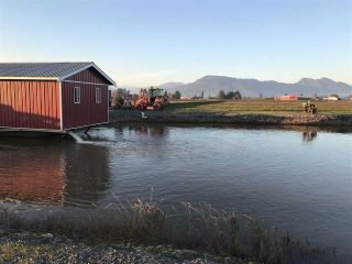 Photo 4: 8450 GIBSON ROAD in Chilliwack: Agriculture for sale : MLS®# C8037456