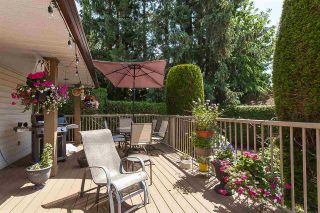 """Photo 33: 21630 45 Avenue in Langley: Murrayville House for sale in """"Murrayville"""" : MLS®# R2547090"""