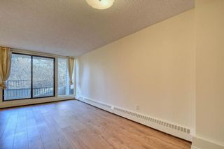 Photo 17: 201 2425 90 Avenue SW in Calgary: Palliser Apartment for sale : MLS®# A1052664
