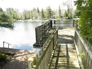 Photo 8: 51 Stanley Road in Kawartha Lakes: Rural Eldon House (Bungalow) for sale : MLS®# X3197516