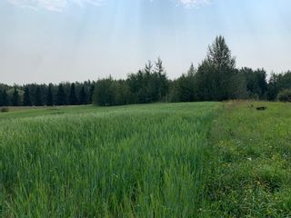 Photo 3: Hwy 616 RR 10: Rural Wetaskiwin County Rural Land/Vacant Lot for sale : MLS®# E4258071