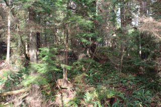 Photo 15: 5852 MARINE Way in Sechelt: Sechelt District Land for sale (Sunshine Coast)  : MLS®# R2545877