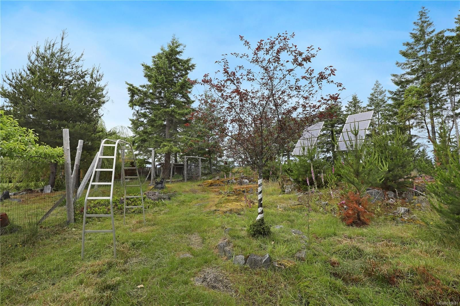 Photo 32: Photos: 979 Thunder Rd in : Isl Cortes Island House for sale (Islands)  : MLS®# 878691