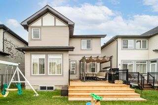 Photo 30: 60 Skyview Shores Gardens NE in Calgary: Skyview Ranch Detached for sale : MLS®# A1132367