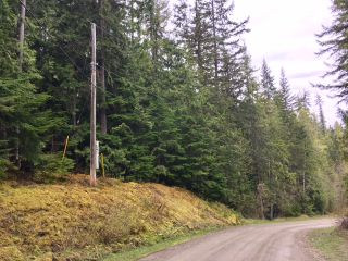 Photo 21: 3,4,6 Armstrong Road in Eagle Bay: Vacant Land for sale : MLS®# 10133907