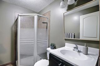 Photo 39: 144 Willowmere Close: Chestermere Detached for sale : MLS®# A1140369