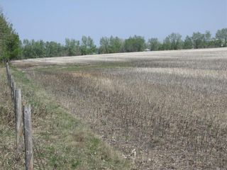 Photo 4: N/A: Olds Land for sale : MLS®# C4185110