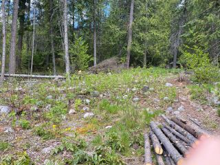 Photo 20: LOT 2 HIGHWAY 3A in Nelson: Vacant Land for sale : MLS®# 2455415
