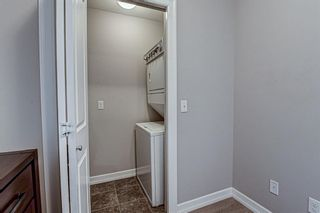 Photo 29: 419 117 Copperpond Common SE in Calgary: Copperfield Apartment for sale : MLS®# A1085904