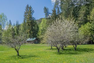 Photo 102: 341 Southwest 60 Street in Salmon Arm: GLENEDEN House for sale (SW Salmon Arm)  : MLS®# 10157771