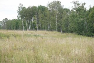Photo 9: 14 53214 RR13: Rural Parkland County Rural Land/Vacant Lot for sale : MLS®# E4266456