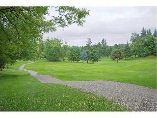 Photo 10: 20915 GOLF Lane in Maple Ridge: Southwest Maple Ridge House for sale : MLS®# V956344