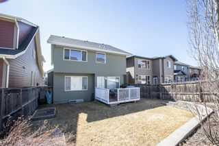 Photo 35: 104 Evanspark Circle NW in Calgary: Evanston Detached for sale : MLS®# A1094401