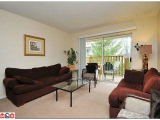 Photo 3: 7027 140TH Street in Surrey: East Newton Duplex for sale : MLS®# F1205361