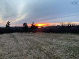 Photo 3: 11.6 acres East Tracadie Road in East Tracadie: 301-Antigonish Vacant Land for sale (Highland Region)  : MLS®# 202122282