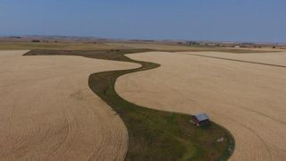 Photo 15: : Rural Foothills M.D. Land for sale : MLS®# C4137604