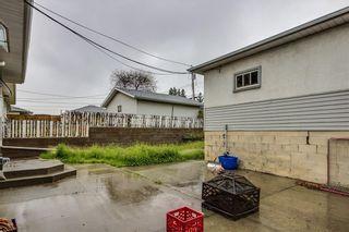 Photo 24: 4823 1 Street NE in Calgary: Greenview Detached for sale : MLS®# C4306006