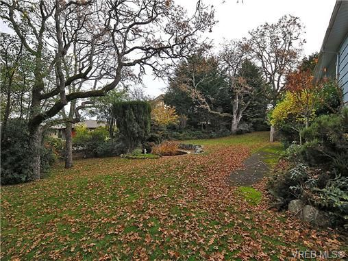 Photo 19: Photos: 3821 Synod Rd in VICTORIA: SE Cedar Hill House for sale (Saanich East)  : MLS®# 655505