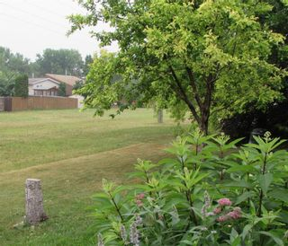 Photo 41: 51 Alberhill Crescent in Winnipeg: Sun Valley Park Residential for sale (3H)  : MLS®# 202118037