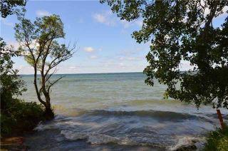 Photo 10: 2765 Maple Trail in Ramara: Brechin Property for sale : MLS®# S4318741