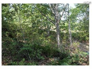 Photo 3: Lot 9 32 Frederick Street in Bedford: 20-Bedford Vacant Land for sale (Halifax-Dartmouth)  : MLS®# 202122429