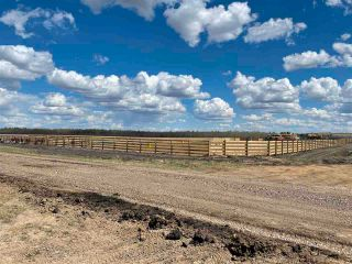 Photo 26: Twp 604 Rg Rd 244: Rural Westlock County Rural Land/Vacant Lot for sale : MLS®# E4223747