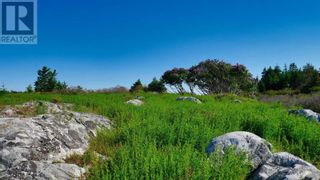 Photo 17: Lot Maiden Hair Island in Lahave Islands: Vacant Land for sale : MLS®# 202114713