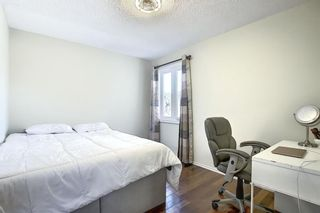 Photo 16: 348 TEMPLETON Circle NE in Calgary: Temple Detached for sale : MLS®# A1090566