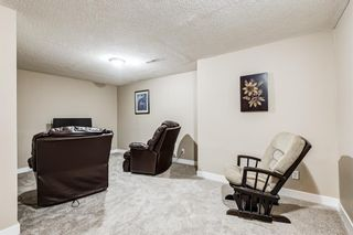 Photo 26: 173 Martinglen Way NE in Calgary: Martindale Detached for sale : MLS®# A1144697