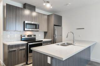 Photo 25: 10306 10308 154 Street in Edmonton: Zone 21 House Duplex for sale : MLS®# E4261939