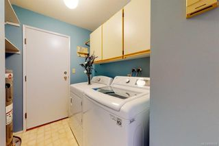 Photo 21: 4249 Quadra St in Saanich: SE Lake Hill House for sale (Saanich East)  : MLS®# 839358