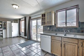 Photo 8: 23 Applecrest Court SE in Calgary: Applewood Park Detached for sale : MLS®# A1079523