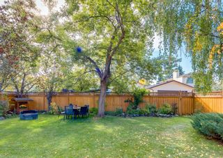 Photo 36: 23 Mckerrell Close SE in Calgary: McKenzie Lake Detached for sale : MLS®# A1145853