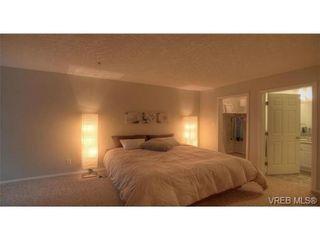 Photo 7: 103 689 Bay St in VICTORIA: Vi Downtown Condo for sale (Victoria)  : MLS®# 657381
