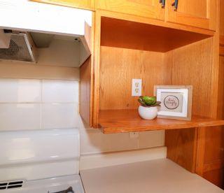 Photo 18: 10831 68 Avenue in Edmonton: Zone 15 House for sale : MLS®# E4259049