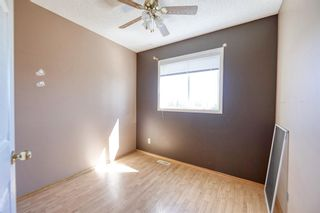 Photo 27: 172 ERIN MEADOW Way SE in Calgary: Erin Woods Detached for sale : MLS®# A1028932